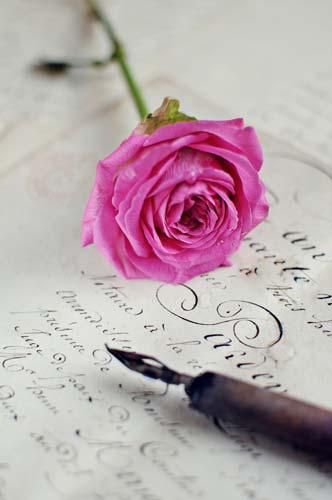 Rose und Stift auf Trauertext