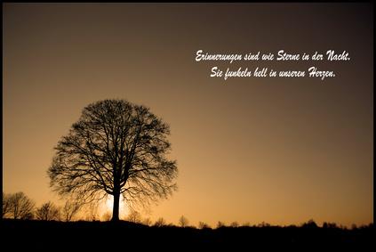 einsam ohne freund